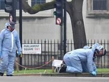 'Aanslag Londen is er een uit IS-boekje'