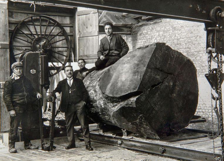 Uit de oude doos: een foto in de werkplaats van de vroegere houtzagerij Koklenberg, die er 150 jaar actief was, vier generaties van vader op zoon, tot 2005.