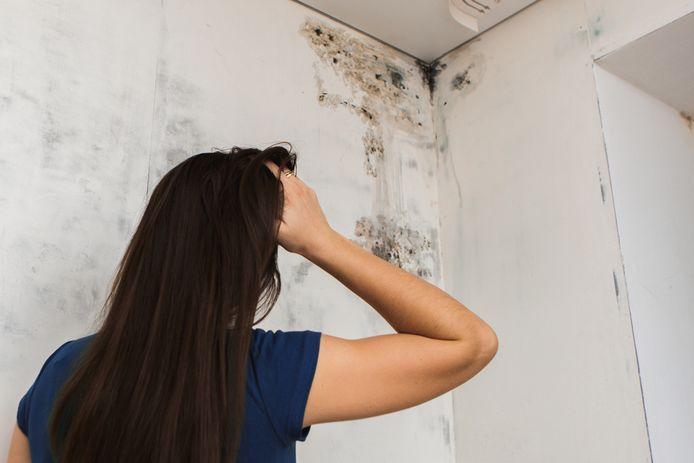 Volgens experts heeft met name een te vochtig huis en fijnstof binnen grote gevolgen voor de gezondheid van bewoners.