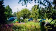 Arboretum zet deuren open voor avondwandeling en kamperen