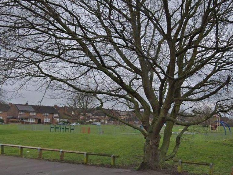 Het meisje werd met steekwonden aangetroffen in een park.