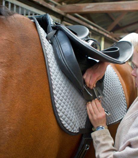 Raad van State: Geen grotere paardenhouderij in Vierakker