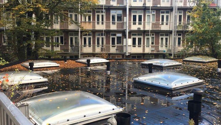 De bebouwing van de binnentuin aan de Geuzenstraat in Amsterdam-West. Beeld Claudia van Tuijl