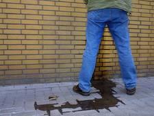 Wildplasser in Meppel de pineut: muur plast terug