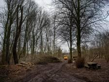 Twintig bomen moeten wijken in de Heemtuin van Druten