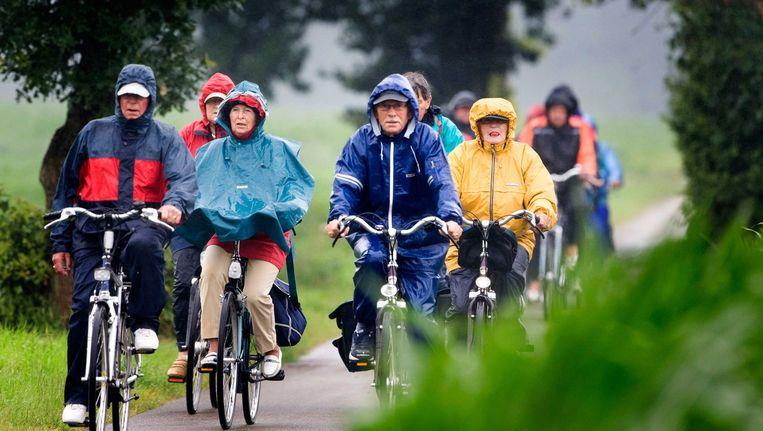 Fietsers op een fietspad in Drenthe. Beeld anp