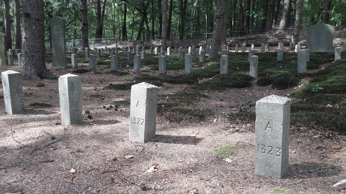 De begraafplaats van Vrederust met de kenmerkende paaltjes.
