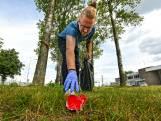 #plastikkie daagt uit tot opruimen eigen omgeving