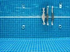 Hoe zedendader Matthew toch in het zwembad aan de slag kon: 'Zo erg voor die ouders in Arnhem'