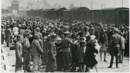 """Shai (62) opent de krant en ziet voor het eerst foto van zijn vader in Auschwitz: """"Ongelooflijk, ontroerend"""""""