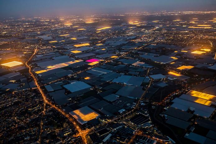Het Westlandse kassengebied vanuit de lucht
