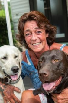 Labradors vergiftigd tijdens wandeling in Overvecht: 'Ik had ze niet later moeten vinden'