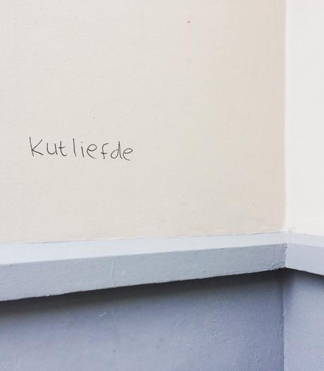 Over kutliefde en BBQ-saus: Tilburg als jachtterrein voor 'knuffelvandalisme'