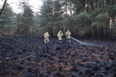 De brandweer blust de bosbrand in Reusel.