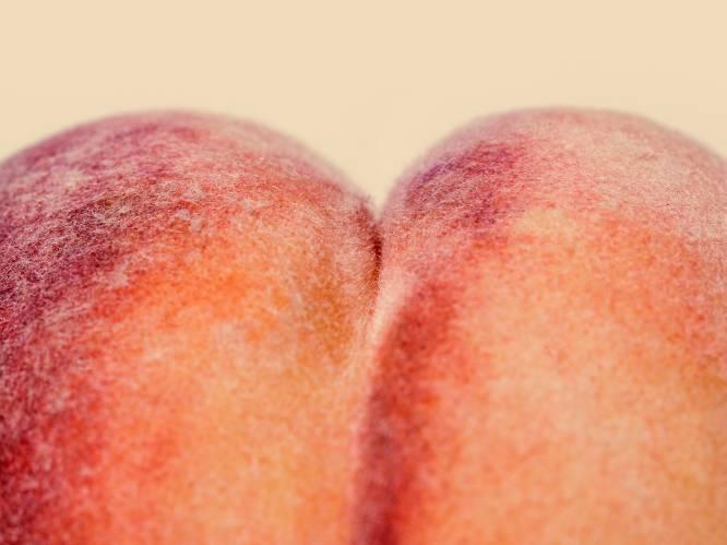 Is de anus het gat in onze kennis? Dokter Bart Van Geluwe over aambeien, de wittebroodsscheet en andere anale taboes