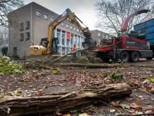 Omwonenden verontwaardigd over bomenkap in Loyolapark Vught