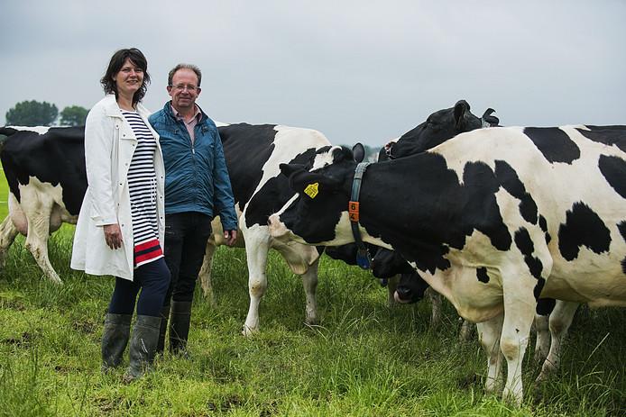 Ron en Laura Leijser tussen de koeien die dagelijks rond de 30 liter melk leveren.