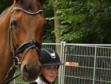 Paardenkeuring voor de CHIO