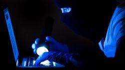 14 jaar cel voor man die jarenlang testpagina voor hackers beheerde