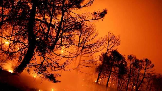 """""""Belgische toeristen ondervinden geen hinder van bosbranden in Spanje"""""""
