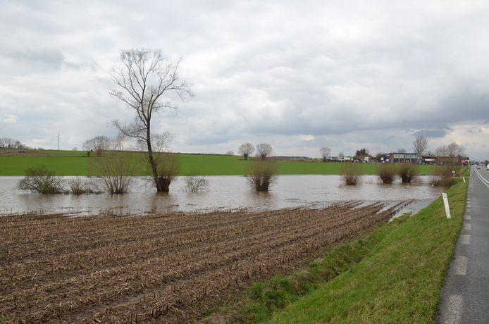 Hier en daar liepen er weides onder water, zoals langs de Edingsesteenweg op de grens van Meerbeke en Denderwindeke.