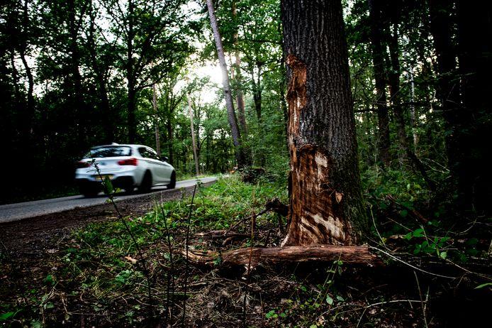Op deze plek kwam een 26-jarige man om het leven door een verkeersongeluk.