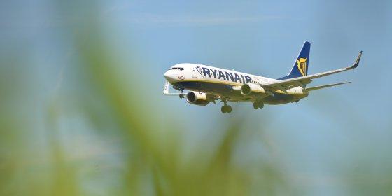Belgen vliegen vaker 'groen'