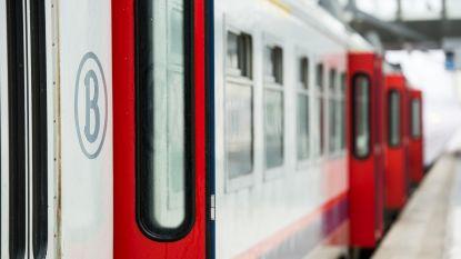 Geen treinen tussen Puurs en Temse door kapotte bovenleiding