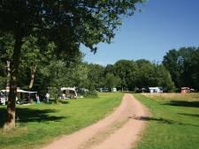 Natuurcamping Olde Kottink in Beuningen mogelijk beste van Nederland