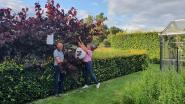 """Ambachtelijke fruitboomkwekerij zet deuren open voor publiek in augustus: """"Coronaveilige rondleidingen in kleine groepjes"""""""