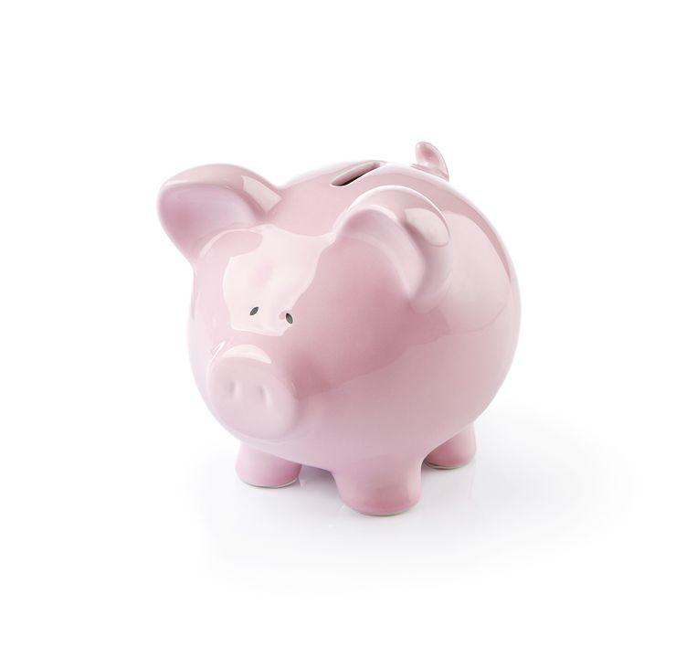 Piggy bank  spaarvarken