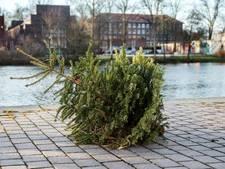 Waarom zijn die kerstbomen nog niet opgehaald?
