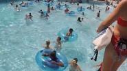 Redder duikt in zwembad om meisje te redden dat dreigt te verdrinken. Kan jij haar spotten?