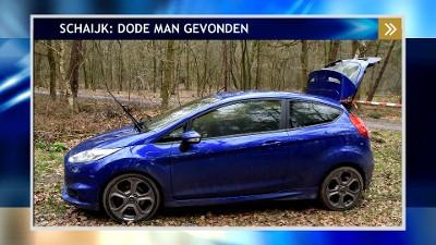 De blauwe Ford Fiesta.