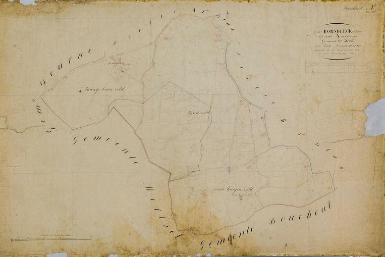 Een plan van de gemeente Borsbeek anno 1815.