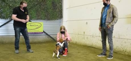 In coronatijd een hondje kopen en trainen in Hengelo: 'Alles wordt ineens véél leuker in huis'