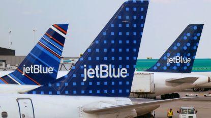 Vliegtuig maakt noodlanding in New York na 'birdstrike'