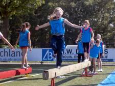 Rhenense schoolkinderen genieten van Olympiade