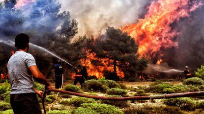 """""""Dodelijke bosbranden zijn een goddelijke straf voor atheïsme van Tsipras"""""""