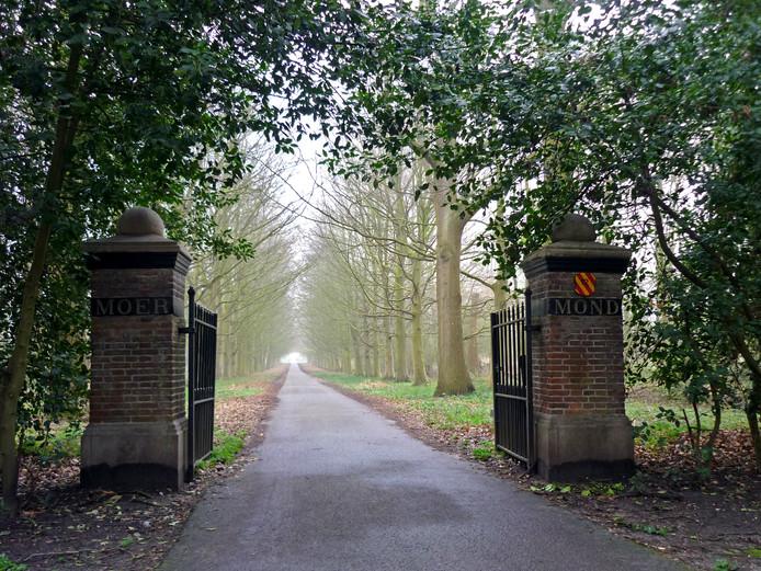 Op het landgoed van Slot Moermond komt wellicht een gedenkbos.