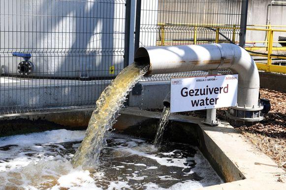 AB InBev levert nu ook gezuiverd afvalwater voor de planten in het provinciedomein in Kessel-Lo.
