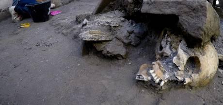 'Gruwelijke vondst': archeologen vinden vijf gave skeletten in Pompeii