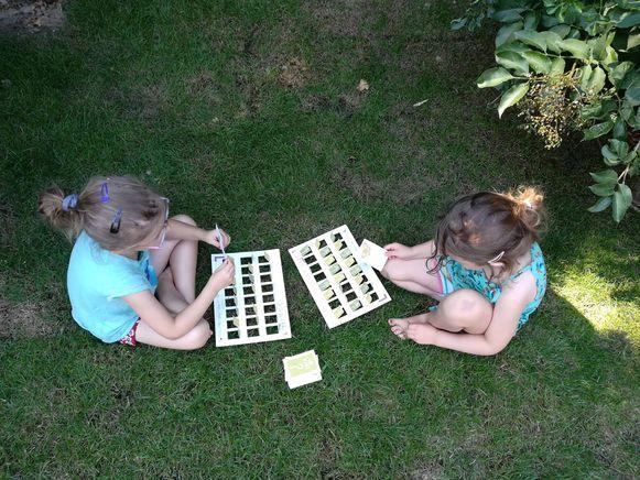 Het Wat ben ik'-spel voor kinderen van 3 tot 12 jaar.