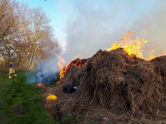 De brandende hoop gras in Eindhoven.