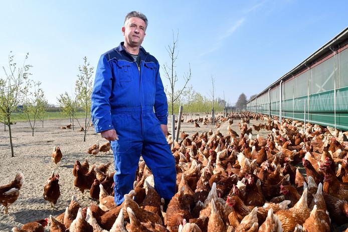 Kippenhouder Harry van Doorn heeft samen met andere kippenhouders een rechtzaak aangespannen tegen NvwA. Ze willen dat NvwA erkent dat ze fouten heeft gemaakt.