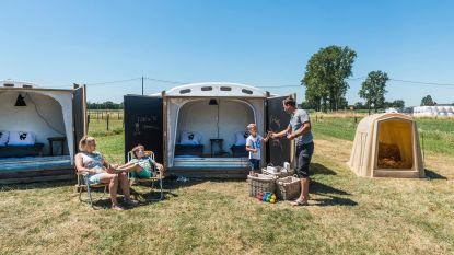Met het 'Kalverdutje' geven uitbaters Herenthoutse boerderij de mensen de kans het boerderijleven van dichtbij te beleven