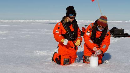 'Ongerepte' sneeuw met 10.000 stukjes microplastic per liter
