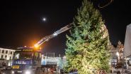 Oudenaarde heeft spuuglelijke kerstboom ingeruild voor prachtexemplaar