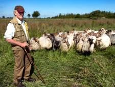 Lamsvlees van herder Hagoort is Groene Hart Streekproduct van het jaar