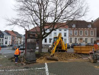 """Twee parkeerplaatsen verdwijnen voor Vrijheidsboom op Gemeenteplein: """"Ruimte geven"""""""